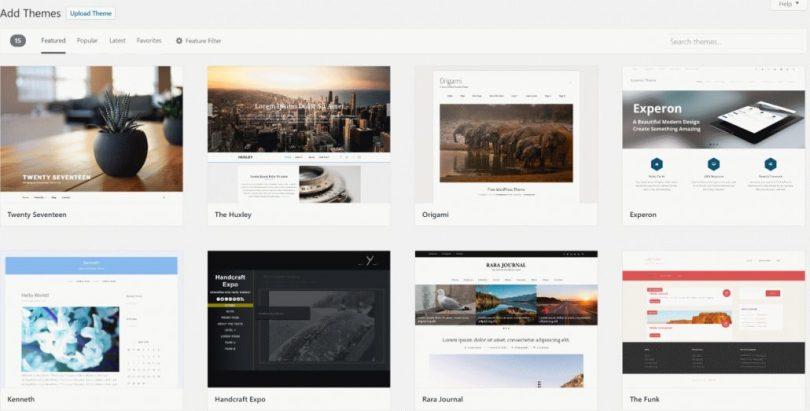 Choose a WordPress Theme